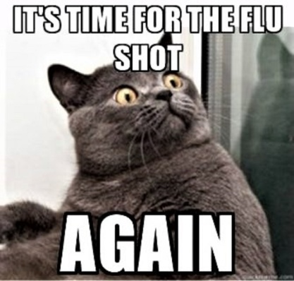 flu-shot-cat- (2)