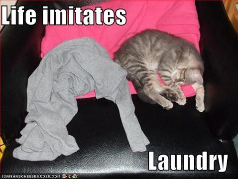 -life-imitates-laundry
